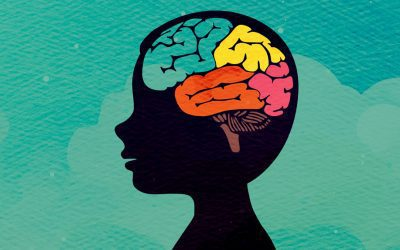 How Mindfulness Affects the Brain